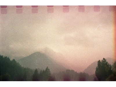THE ALPS / PINK MIST